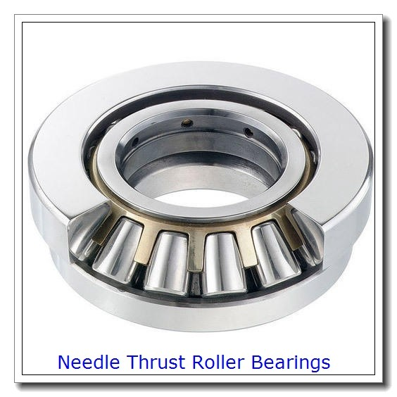 IKO LRTZ505841 Needle Non Thrust Roller Bearings